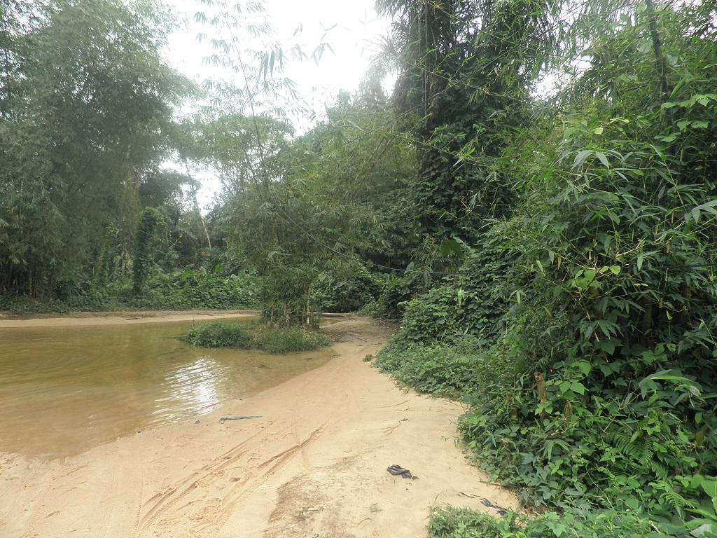 Ebimpé, commune d'Anyama Côte D'Ivoire